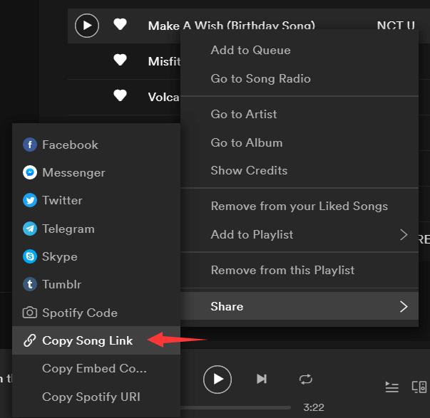 SpotiKeep Spotify Ripper Copy Spotify Link